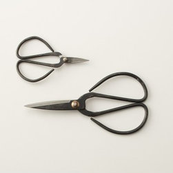 Flower Snips - If you grow flowers that you like to use as fresh blooms in your home, you will need some good flower snips like these. Their vintage look makes them even more attractive and makes gardening even more fun.