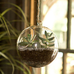 Glass Hanging Orb - This hanging glass orb brings a bit of indoor whimsy to a typically outdoor scene.