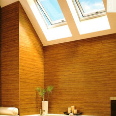 Skylights by Hudson Street Design