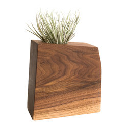 Few Bits - Modern Wood Succulent Planter/Tillandsia Planter, Walnut - These planters are made from thick blocks of wood that are laminated together and then cut into a abstract geometric shape. After they are carefully sanded smooth, a hand rubbed danish oil is applied for a matte finish.