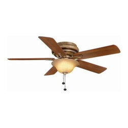 Hampton Bay - Indoor Ceiling Light with Fan: Hampton Bay Bay Island 52 in. Desert Patina Ceili - Shop for Lighting & Fans at The Home Depot. Add an updated look to your transitional decor with the Hampton Bay Bay Island 52 in. Desert Patina Ceiling Fan. This 3-speed fan features 5 blades to help move air efficiently, with quiet, wobble-free operation. The bowl light kit offers aged champage glass and includes 3 bulbs to provide brilliant illumination. The handy pull chains provide independent light and speed controls.
