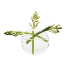 Adalene Vase - Perfect for your mantelpiece or windowsill, the Adalene Vase displays your favorite flowers like a work of art. The criss-cross pattern your stems forms will add sophistication and charm to any home. Looks great with a wide variety of floral arrangements, including bright daffodils and freesia.