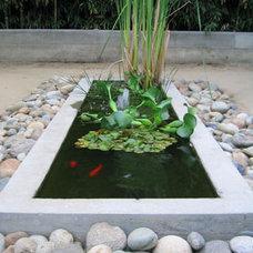 Modern  decorative pool