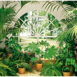Wintergarden Wall Mural - A beautiful greenhouse is the centerpiece of this impressive wall mural.