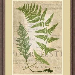 Amanti Art - Vision Studio 'Fern Folio IV' Framed Art Print 24 x 32-inch - Let the greenery grace your wall with this delicate fern frond study from Vision Studio.