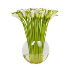 The French Bee - Large Cala Lily in Flat Fish Bowl Vase - You know these are finely crafted faux flowers when presented in such a straightforward arrangement. There's not much to hide with this assortment of green and white cala lillies, lined up in a flat fishbowl vase. Every exquisite detail is on display, from the delicate curled petals to the verdant green stalks to the water illusion pooling at the bottom. Stays garden-fresh with just a little light dusting.
