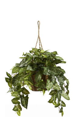 Nearly Natural - Nepthytis Hanging Basket - Nature sure has a lot of subtle beauty, doesn't it? And this hanging basket Nepthytis plant personifies that to the utmost. With it's many shades of green and full cascade of angled leaves, this is an ideal way to bring nature inside, whether it's for a home or office. Complete with a beautiful hanging basket, it'll never need sun or water, and will last a lifetime. Makes a fantastic gift as well.