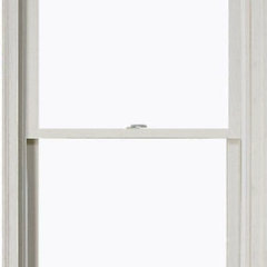 traditional windows by Home Depot