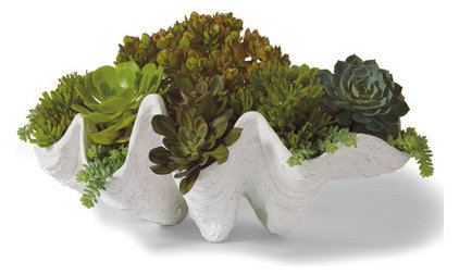 Beach Style Outdoor Pots And Planters by Grandin Road