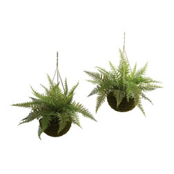 """Nearly Natural - 2-Pc Leather Fern with Mossy Hanging Basket S - Includes two beautiful mossy hanging baskets. Ideal for both indoor and outdoor use. Fresh look really brings home the sense of nature. Made from silk. Green color. Planter: 8 in. Dia. x 4 in. H. Overall: 18 in. Dia. x 13 in. HThe fern is an ideal """"hanging basket"""" plant. The """"delicate but full"""" leaves are seemingly made to spill out and over a pot. Best of all, meaning your decorating options are numerous (and year-round)."""