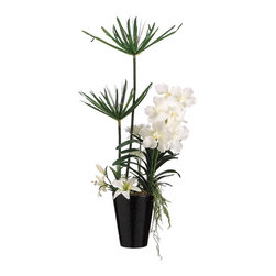 Silk Plants Direct - Silk Plants Direct Cypress and Vanda Orchid (Pack of 1) - Pack of 1. Silk Plants Direct specializes in manufacturing, design and supply of the most life-like, premium quality artificial plants, trees, flowers, arrangements, topiaries and containers for home, office and commercial use. Our Cypress and Vanda Orchid includes the following: