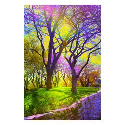 Spring Splendor Photograph - Photograph with digital painting. Available on metal in editions of 200. The next available edition number will be shipped.