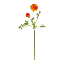 Nearly Natural - 23 in. Ranunculus Stem - Set of 12 - Winding stems and soft full blooms. Blooms positively swirl with color. Will brighten any area they adorn. Construction Material: Polyester material, Iron wire. 6.5 in. W x 2.5 in. D x 23 in. H ( 1.5 lbs. )The incredible beauty of the Ranunculus Flower cannot be overstated. With its winding, verdant stems and soft, full blooms that positively swirl with color; these enchanting flowers will brighten any area they adorn. Bold and beautiful, each individual stem is something to behold, not to mention the effect of several together. Sold in a set of twelve stems.