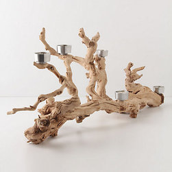 Napa Valley Candelabra - The most obvious natural wood accessory that will immediately make an outdoors-in impact is a beautiful piece of large driftwood. This grapevine branch version by Anthropologie is lined with tea lights.