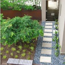 Modern  stepping stones pathway
