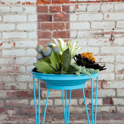 Steel Life's Shallow Root Vessel | Sky blue - An ideal sanctuary for all your succulents and water-wise plants.  This modern planter's unique design eliminates the need for excessive soil and water that would be needed to fill a deeper container.  Sustainable, efficient and unparalleled style~this planter is a game changer in the modern garden world.