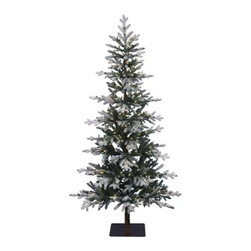 Clifton Pine Christmas Tree - SHARE THE WINTER CHARM WITH TREE CLASSIC'S CLIFTON PINE CHRISTMAS TREE