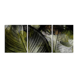 Ready2HangArt - Ready2HangArt Alexis Bueno 'Abstract Palm II' 3-piece Canvas Wall Art - This tropical abstract canvas art set is the perfect addition to any contemporary space. It is fully finished, arriving ready to hang on the wall of your choice.