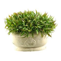 D&W Silks - D&W Silks Wild Grass In Oblong Ceramic - Wild Grass Arrangement