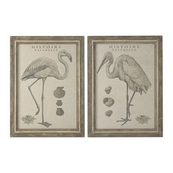 Uttermost - Uttermost Natural History 39x29 Rectangular Framed Art (Set of 2) - Prints are Printed on Gray, Oatmeal Linen Fabric. Frames Have Taupe Undertones with Multiple Shades of Brown Distressing. Inner Lips Have Taupe Undertones with Medium Brown Distressing. Medium Gray Wash Covers Entire Frame.