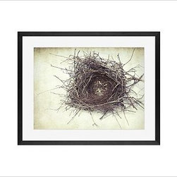 "Lupen Grainne Framed Print, Nest, Mat, 16 x 20"", Black - This is an image of an abandoned nest the photographer found in an enormous passionflower vine. The photo is at once charming and haunting, conjuring up thoughts of flight and home. 13"" wide x 11"" high 20"" wide x 16"" high 42"" wide x 28"" high Alder wood frame. Black or white painted finish; or espresso stained finish. Beveled white mat is archival quality and acid-free. Available with or without a mat. {{link path='/shop/accessories-decor/pb-artist-gallery/artist-gallery-lupen-grainne/'}}Get to know Lupen Grainne.{{/link}}"