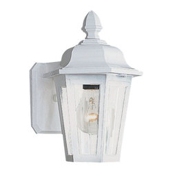 Sea Gull Lighting - Sea Gull Lighting 8822 Outdoor Wall Lantern from the Brentwood Collection - *Rugged but decorative cast aluminum