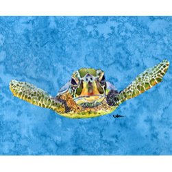 Caroline's Treasures - Turtle Coming At You Fabric Standard Pillowcase Moisture Wicking Material - Standard White on back with artwork on the front of the pillowcase, 20.5 in w x 30 in. Nice jersy knit Moisture wicking material that wicks the moisture away from the head like a sports fabric (similar to Nike or Under Armour), breathable performance fabric makes for a nice sleeping experience and shows quality.  Wash cold and dry medium.  Fabric even gets softer as you wash it.  No ironing required.