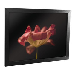 Trademark Global - 24 in. Tulip Framed Canvas Art - Contemporary style. Reflective crystal plexiglass. Sawtooth hanger. 1.25 in. black satin wood grain frame. Black color. No assembly required. Rabbit size: 0.25 in.. Image size: 22 in. W x 16 in. H. Overall: 24 in. W x 18 in. H (5 lbs.)Accent the walls in your kitchen, living room, or bar with a beautiful piece of Framed Canvas Art.