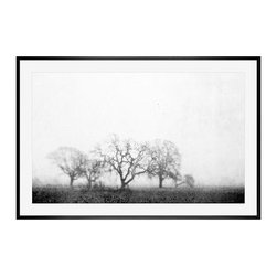 """Lupen Grainne Framed Print, Black & White Fog and Trees, Mat, 28 x 42"""", Black - The unity and diversity of an oak tree's bare winter branches stand in stark relief against a wide foggy sky. A study in natural patterns, the distant trees take on the look of coral, as multifaceted as snowflakes. 13"""" wide x 11"""" high 20"""" wide x 16"""" high 42"""" wide x 28"""" high Alder wood frame. Black or white painted finish; or espresso stained finish. Beveled white mat is archival quality and acid-free. Available with or without a mat.{{link path='shop/accessories-decor/pb-artist-gallery/artist-gallery-lupen-grainne/'}}Get to know Lupen Grainne.{{/link}}"""