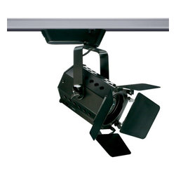 Juno Lighting - Trac-Master T290 Theatrical Low Voltage MR16 Track Light - Theatrical Lights are designed for applications requiring controlled light, higher intensities and wattages.