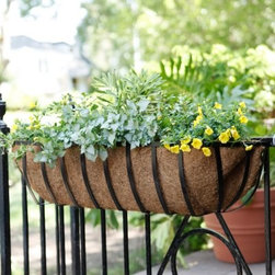"Newport Window Box Planter - Black - The Newport Window Box Planter - Black is the classic window and rail planter. Often referred to as the """"Hayrack Window Planter """" this style of window box planter is hung all over the world's most distinguished addresses. It's constructed of zinc and powdered coated steel that will provide rust free beauty for years."