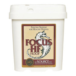 Source - Source Inc. Source Focus HF Multicolor - 573935 - Shop for Horse Nutrition and Supplements from Hayneedle.com! Source Inc. Source Focus HF provides the most effective essential nutrient building blocks to support superior hoof growth texture and strength. This micronutrient is a unique blend of minerals and other nutrients that may be missing from your horse's diet.