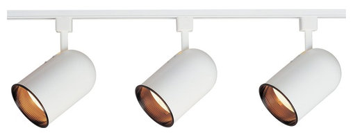 Maxim Lighting - Maxim Lighting Track Light Kit X-TW01329 - Maxim Lighting's commitment to both the residential lighting and the home building industries will assure you a product line focused on your lighting needs. With Maxim Lighting you will find quality product that is well designed, well priced and readily available.