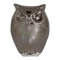 Home Decorators Collection - Chrome Owl Figurine - Let this charming Chrome Owl Figurine brighten up your home with its decorative appeal. Display this figurine in your home office, kitchen or bathroom. Crafted of plated ceramic. Silver chrome finish. Makes a great display item.