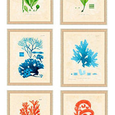 Tropical Prints And Posters by Ballard Designs