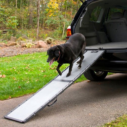 Gen7Pets - Gen7Pets Feather-Lite Pet Ramp Multicolor - G7075FL - Shop for Ramps Stairs and Accessories from Hayneedle.com! Get smaller or older pets up and into the car easily with a Gen7 Pets Feather-Lite Pet Ramp. This ramp features the widest walking surface on a 16-inch ramp 13.75 inches with grippy sandpaper tread. It also has an easy locking folding design and rubber grips on both sides.