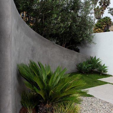 FormLA Landscaping - A sculpted planter with established olive trees protects a modern home from Pacific Coast Highway noise.  Permeable concrete pavers, a sculpted gravel pathway, and IdealMow lawn ensure this architectural landscape is ocean-friendly.