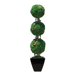 "Triple Moss Ball Bonsai - This 72"" Triple Moss Ball Bonsai tree has three moss balls (approximately 18"", 17"", 16"") infused with bonsai wood. Add the medium black azar to complete this zen look."