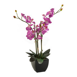 """D&W Silks - Artificial Purple Phaeleanopsis Orchids in Black Ceramic Planter - It's amazing how much adding a plant can change the look of a room or decor, but it can be difficult if your space is not conducive to growing plants, or if you weren't exactly born with a """"green thumb."""" Invite the beauty of nature into your home without all the upkeep with this maintenance-free, allergy-free arrangement of artificial purple phaeleanopsis orchids in a black ceramic planter. This is not a living plant."""