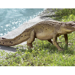 Garden decor - The Walking Crocodile Statue