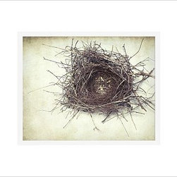 "Lupen Grainne Framed Print, Nest, No Mat, 16 x 20"", White - This is an image of an abandoned nest the photographer found in an enormous passionflower vine. The photo is at once charming and haunting, conjuring up thoughts of flight and home. 13"" wide x 11"" high 20"" wide x 16"" high 42"" wide x 28"" high Alder wood frame. Black or white painted finish; or espresso stained finish. Beveled white mat is archival quality and acid-free. Available with or without a mat. {{link path='/shop/accessories-decor/pb-artist-gallery/artist-gallery-lupen-grainne/'}}Get to know Lupen Grainne.{{/link}}"