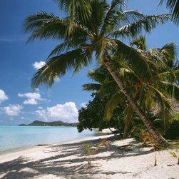 Murals Your Way - Matira Beach, Bora Bora Wall Art - Matira Beach on Bora Bora is in French Polynesia in the South Pacific