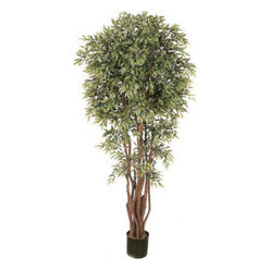 Oriental-Décor - 6 1/2' Deluxe Ruscus Tree - Bring any indoor setting to life with this artificial house plant 6 1/2 foot Deluxe Ruscus Tree. Designed to appear as realistic as possible as a live tree, this artificial potted creation is made from silk and polyester. At 78 inches, this beautiful tree will surely add an interesting, tropical feel to a home, office or any indoor setting. It features a full head of leaves as well as real wood trunks gathered together in a beautiful wicker basket/pot. An excellent addition to any Oriental-styled space or as an accent piece in any room, this artificial foliage is crafted using only the finest, highest-quality materials. Do away with the maintenance routines required by many li