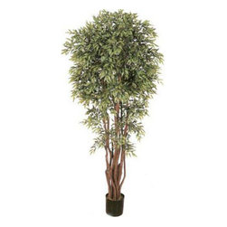 Oriental-Décor - 6 1/2' Deluxe Ruscus Tree - Bring any indoor setting to life with this artificial house plant 6 1/2 foot Deluxe Ruscus Tree. Designed to appear as realistic as possible as a live tree, this artificial potted creation is made from silk and polyester. At 78 inches, this beautiful tree will surely add an interesting, tropical feel to a home, office or any indoor setting. It features a full head of leaves as well as real wood trunks gathered together in a beautiful wicker basket/pot. An excellent addition to any Oriental-styled space or as an accent piece in any room, this artificial foliage is crafted using only the finest, highest-quality materials. Do away with the maintenance routines required by many live, indoor plants. This 6 ½ foot Deluxe Ruscus Tree is easy to maintain, reasonably priced and best of all, great to have around in your home or any indoor space. Order one today to give your space the beautiful, comfortable style it needs!