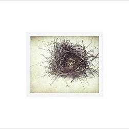 "Lupen Grainne Framed Print, Nest, No Mat, 11 x 13"", White - This is an image of an abandoned nest the photographer found in an enormous passionflower vine. The photo is at once charming and haunting, conjuring up thoughts of flight and home. 13"" wide x 11"" high 20"" wide x 16"" high 42"" wide x 28"" high Alder wood frame. Black or white painted finish; or espresso stained finish. Beveled white mat is archival quality and acid-free. Available with or without a mat. {{link path='/shop/accessories-decor/pb-artist-gallery/artist-gallery-lupen-grainne/'}}Get to know Lupen Grainne.{{/link}}"