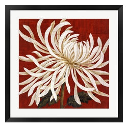 Framed Art Print - White Spider Mum on Red Spider Mum I by Judy Shelby - Beautifully framed Spider Mum I fine art print by Judy Shelby.
