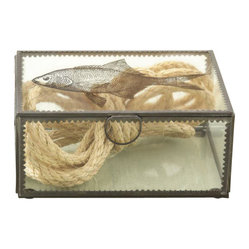 Sea Life Crimped Edge Transitional Box
