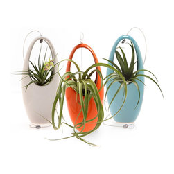 "Bambeco Hanging Egg Aeriums - Modern and unique, our Hanging Egg Aeriums are sure to please. Sleek, simple, modern design highlights these remarkable aeriums. Perfect for ""air"" plants or succulents, they can also serve as a vase for cut flowers and arrangements. Hang them from the provided cable, or rest them on a table. Lead-free, high-fire glaze on natural ceramic gives them beautiful gloss and rich color. Available in two colors to suit your décor.   Dimensions: 8""H x 3.5""dia."