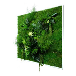 flowerboxnature - Square XL Nature Frame - This Square Nature Frame will give you a different option to meet the art on your walls. The various plants used in the Nature Frames are 100% natural and biodegradable. Use various shapes and sizes to create a modern salon wall or hang a single piece to add a wall garden to any space for many years to enjoy.