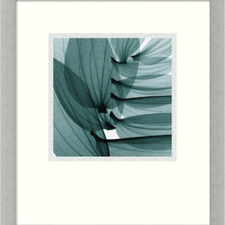 Amanti Art - Lily Leaves Framed Print by Steven N. Meyers - Lily leaves positioned in a way that is positively spinal make this botanical x-ray print a rare head turning beauty. This revelatory lily piece, by artist Steven Meyers, comes framed in an ultramodern, silver leaf frame, and will look so thoughtful and sophisticated in your home or professional environment.
